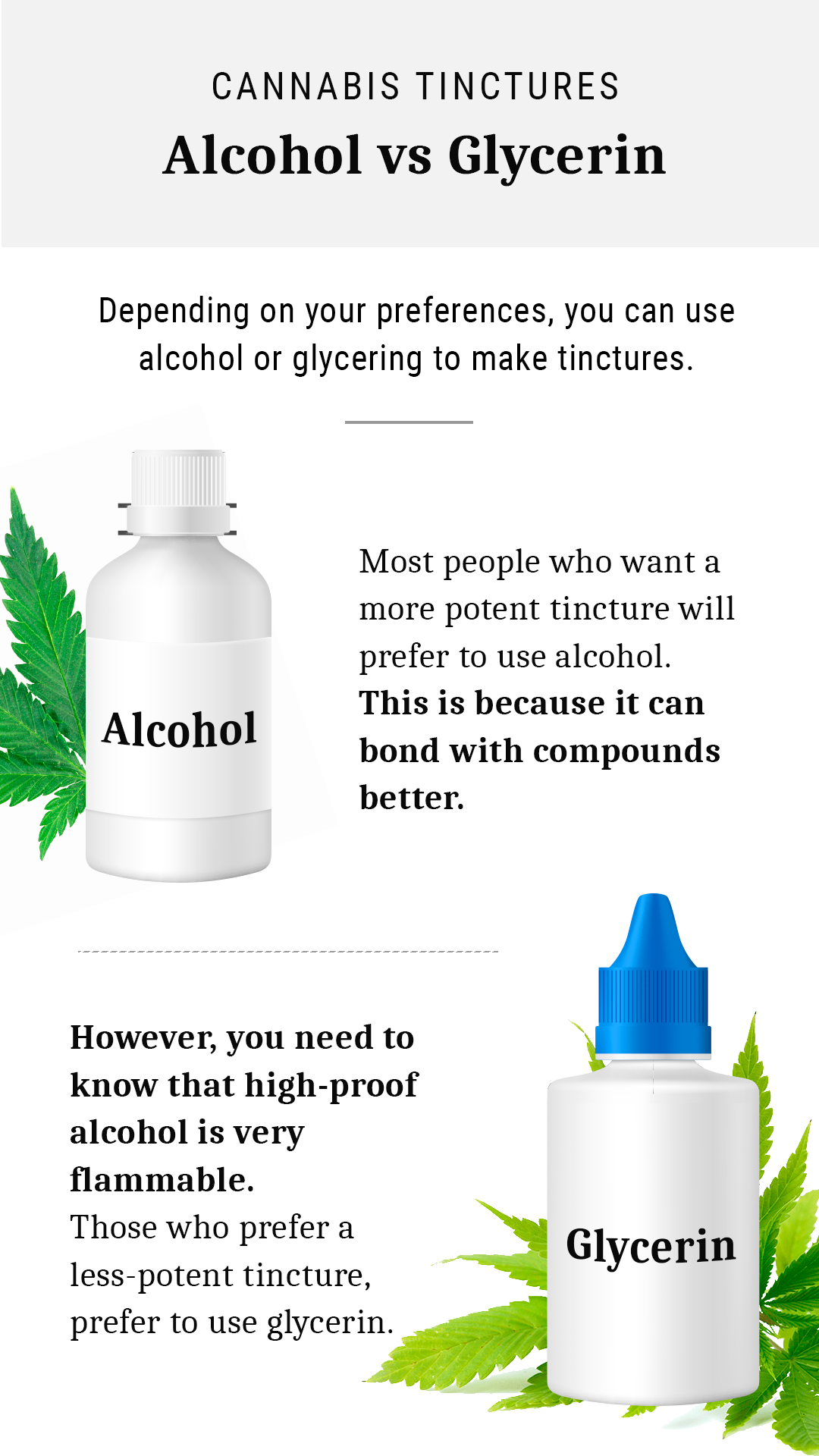 Cannabis Tinctures - Alcohol vs Glycerin - Hoja
