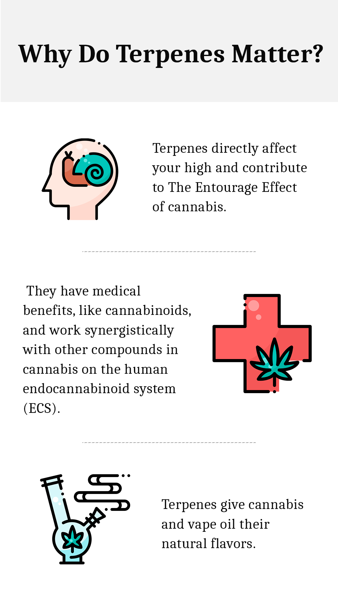 Why do terpenes matter
